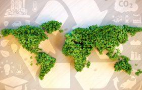 sostenibilità the procurament