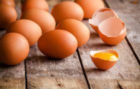 EggsTheprocurement
