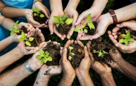 Diversità e sostenibilità