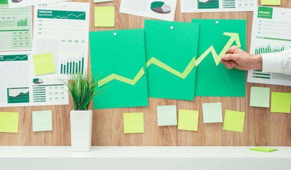 sostenibilità bilancio business green