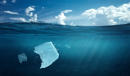 Sacchetto di plastica in mare