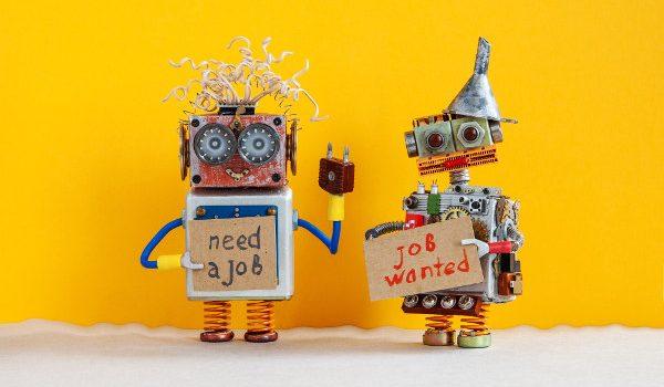 the procurement job