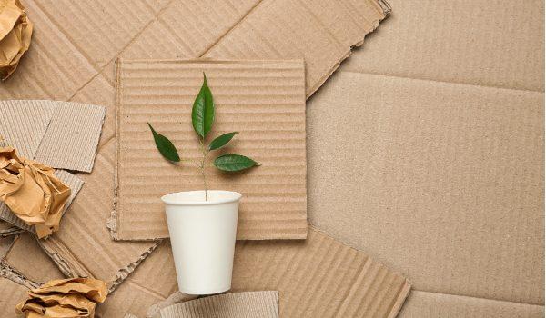 3 idee di packaging ecosostenibile
