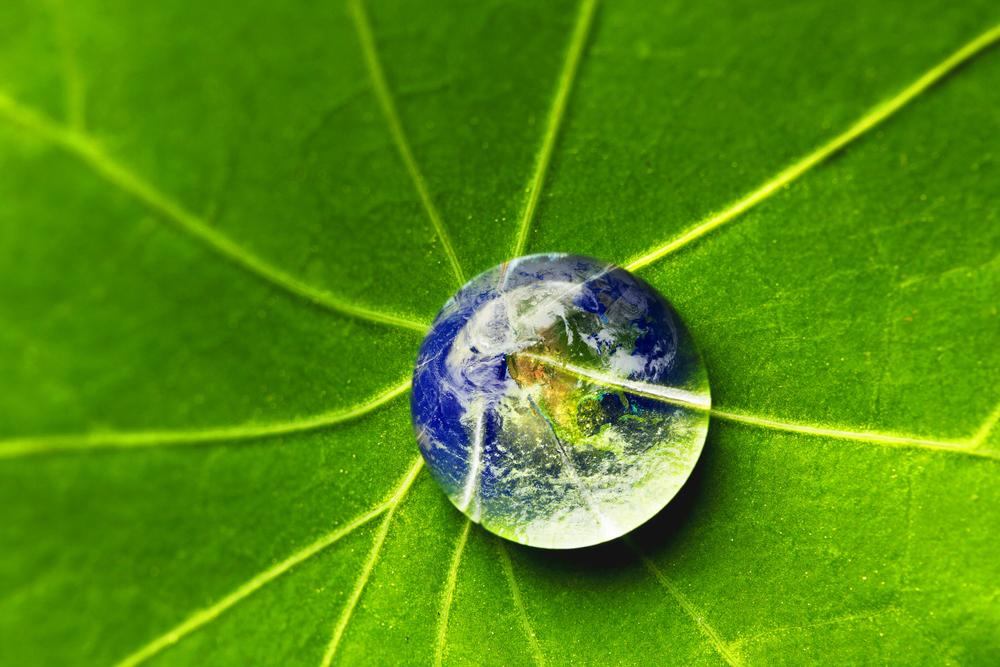 Img-02-sostenibilità