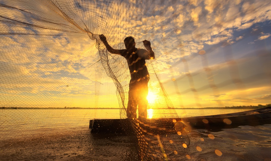 sustainable-fishing-supply-chain-msc